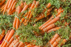 Bunches of Organic Carrots Stock Photography