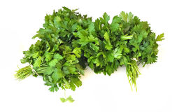 Bunches of parsley. On a white background Royalty Free Stock Photos
