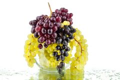 Bunches of red and white grapes in glass round vase on white mirror background with reflection and water drops isolated close up royalty free stock photography