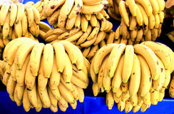 Bunches of ripe bananas Royalty Free Stock Photo