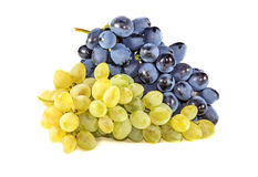 Bunches of ripe grapes Royalty Free Stock Images