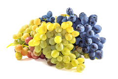 Bunches of ripe grapes Royalty Free Stock Photos