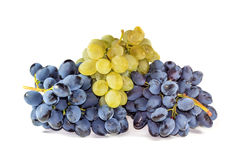 Bunches of ripe grapes Stock Images