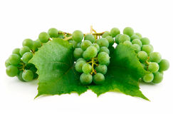 Bunches of Ripe Green Grapes with Leaf Isolated Stock Photography