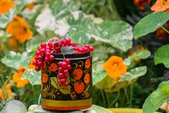 Bunches of ripe red currant in decorative wooden pot, painted in Khokhloma style. The currant is one of the most widespread berry shrubs of the Russian garden Royalty Free Stock Photos