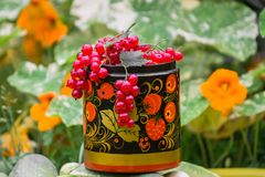 Bunches of ripe red currant in decorative wooden pot, painted in Khokhloma style. The currant is one of the most widespread berry shrubs of the Russian garden Royalty Free Stock Images