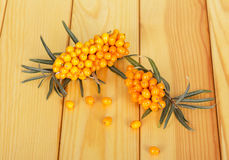 Bunches  ripe sea-buckthorn berries on  background of light wood. Royalty Free Stock Photo