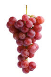 Bunches of Summer fresh red grape. With white isolate background Royalty Free Stock Photo