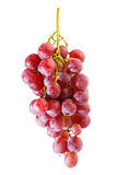 Bunches of Summer fresh red grape. With white isolate background Stock Photography
