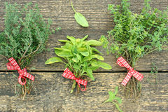 Bunches of thyme and sage Stock Images