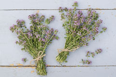 Bunches of thyme Royalty Free Stock Photos