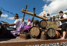Bunches of Tinta Negra Mole grapes on pergola in Estreito  de Camara  de Lobos on Madeira. Stock Image