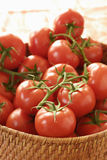 Bunches of tomatoes Royalty Free Stock Photography
