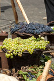 Bunches of white and black grapes in a wicker basket Royalty Free Stock Photography