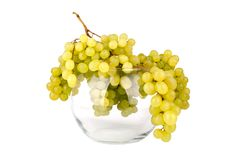 Bunches of green grapes in glass round vase on white mirror background with reflection and water drops isolated close up stock photography