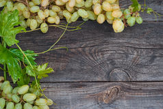 Bunches of white grapes on the gray wooden surface Stock Images