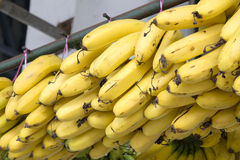 Bunches of Yellow Bananas Stock Images