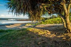 Bundaberg beach at sunset in Queensland, Australia stock photo