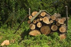 Bundel van brandhout op het gras Stock Fotografie