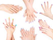 Bundel van handen met de manicure van de schellakkunst royalty-vrije stock foto
