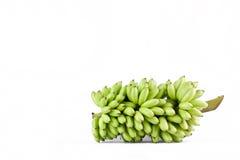 bundel van ruwe eibananen op wit geïsoleerd fruitvoedsel het achtergrond gezond van Pisang Mas Banana Royalty-vrije Stock Foto's