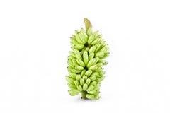 bundel van ruwe Gouden bananen op wit geïsoleerd fruitvoedsel het achtergrond gezond van Pisang Mas Banana Stock Fotografie