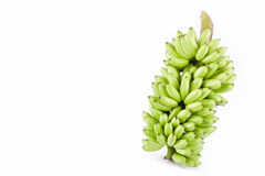 bundel van verse ruwe DameFinger banaan op wit geïsoleerd fruitvoedsel het achtergrond gezond van Pisang Mas Banana Stock Afbeelding