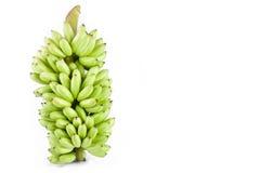 bundel van verse ruwe DameFinger banaan op wit geïsoleerd fruitvoedsel het achtergrond gezond van Pisang Mas Banana Stock Foto's