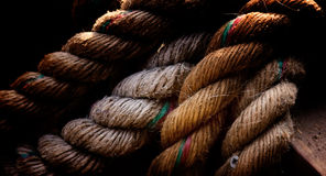 Bundels van kabel Royalty-vrije Stock Foto