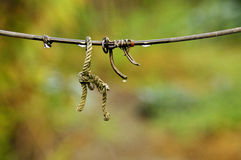 Bundle. Curled on a wet wire Royalty Free Stock Photography