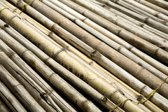 Bundle of Bamboo Sticks Close-up Stock Images