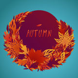 A bundle of bright filigree autumn leaves Stock Images