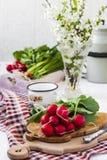 Bundle of  bright fresh organic radishes with leaves Stock Photos
