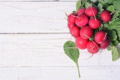 Bundle of bright fresh organic radishes Stock Photo