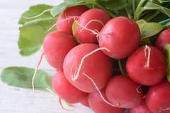 Bundle of bright fresh organic radishes Stock Image