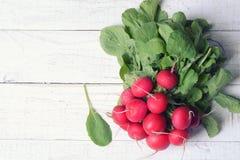 Bundle of bright fresh organic radishes Stock Photos