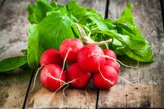 Bundle of bright fresh organic radishes with leaves on wooden table. Bundle of  bright fresh organic radishes with leaves on wooden rustic table Stock Images