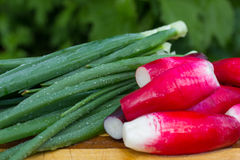 Bundle of bright fresh organic radishes with slices and green onion on wooden cutting board. Young radishes and green onions on a plate Royalty Free Stock Images