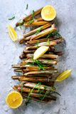 Bundle, bunch of fresh razor clams on ice, grey concrete background, lemon, herbs. Copy space, top view. Royalty Free Stock Images