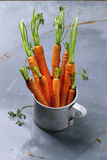 Bundle of carrots Stock Images