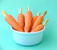 Bundle of carrots in bowl on blue background (close up) Royalty Free Stock Photo