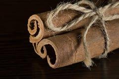 Bundle of cinnamon Stock Images
