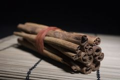 Bundle Of Cinnamon Sticks Stock Images