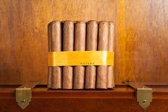 Bundle of cubans. Bundle of cuban cigars tied with a yellow ribbon reading HABANA Stock Photography