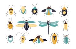 Bundle of different colorful geometric insects with wings and antennas isolated on white background - bugs, beetles. Firefly, ladybug, cricket. Cartoon vector Royalty Free Stock Photo