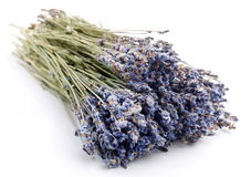 Bundle of dried lavender Stock Photos