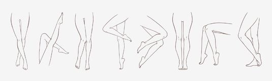 Bundle of female legs in different poses or postures hand drawn with contour lines. Collection of elegant drawings of. Women`s feet isolated on white background vector illustration