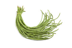 Bundle of fresh Chinese long beans Stock Photography