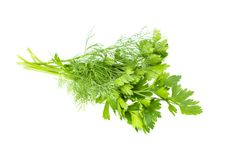 Bundle of fresh dill and parsley, green raw organic leaves, food ingredient, studio shot, isolated on white background. Bundle of fresh dill and parsley, green stock image