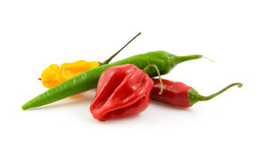 Bundle of fresh hot peppers Royalty Free Stock Images